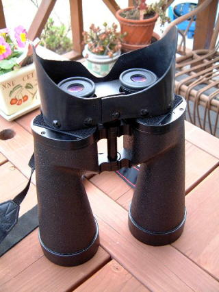 Binocular attached goggles